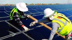 Bộ Chính trị khuyến khích kinh tế tư nhân tham gia phát triển năng lượng