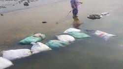 Thái Nguyên: Truy tìm kẻ ném 20 bao tải xác gà xuống đập cầu Líp