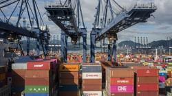 Ám ảnh cảnh hàng nghìn container thịt đông lạnh đắp đống ở cảng do COVID-19
