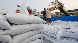 Philippines ngừng nhập gạo: Đòn gió, không lo