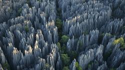 Đẹp rợn người - khu rừng đá sắc nhọn nhất thế giới