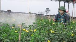 Xây dựng NTM ở Mê Linh (Hà Nội): Đột phá vào khâu quy hoạch