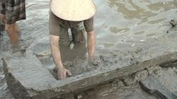 Đào ao thả cá, phát hiện mộ cổ từ thời Đông Sơn