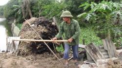 Lật tẩy những vụ tự bốc cháy đầy bí ẩn ở Việt Nam