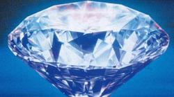 Cảnh sát chờ trộm đại tiện ra… kim cương