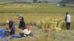 Hội cùng nông dân vượt khó