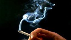 40.000 ca tử vong mỗi năm do thuốc lá