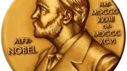 8 tác giả đoạt  Giải Nobel tới VN