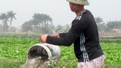 Hội Nông dân Huyện Đông Anh (Hà Nội): Đổi mới chỉ đạo Đại hội Hội ND cơ sở