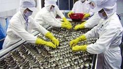 Đề nghị Nhật Bản quy định Ethoxyquin cho tôm như cá