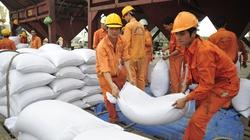 Việt Nam bán cho Ghi-nê 300.000 tấn gạo/năm