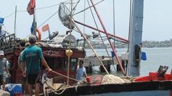 Thừa Thiên - Huế:  Ngư dân tiến ra Hoàng Sa