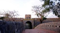 Những lâu đài chục triệu đô tráng lệ giữa Sài Gòn