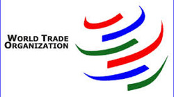 Cần loại bỏ các dự án FDI không mang lại lợi ích quốc gia