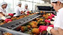 Nhật Bản công nhận  kiểm nghiệm nông  sản của Việt Nam