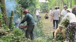 Nông dân đồng lòng xây dựng nông thôn mới