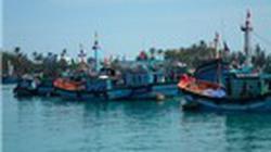 Quảng Bình: Lắp đặt định vị vệ tinh  cho 90 tàu cá