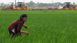 Hỗ trợ chuyển nghề  khi thu hồi đất