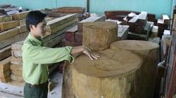 """Chi trả tiền dịch vụ môi trường rừng ở Tây Nguyên: """"Đếm đầu phát gạo"""""""