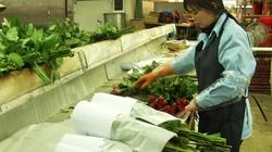 Kiểm dịch bắt buộc giống rau, hoa nhập khẩu: DN kêu bị làm khó