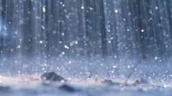 Vùng núi phía Bắc xuất hiện mưa vừa, mưa to