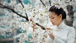 Hà Kiều Anh đẹp lộng lẫy giữa ngợp sắc hoa
