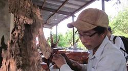 Khá giả từ nghề gỗ lũa