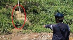 Quảng Nam: Công ty khai thác vàng xả chất độc ra sông