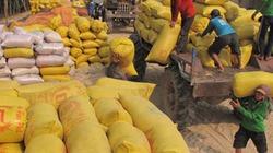Chính sách tạm trữ lúa gạo: Hiệu quả rất thấp!
