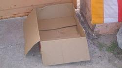 Bé sơ sinh bị bỏ trong thùng giấy, đặt trước cổng chùa