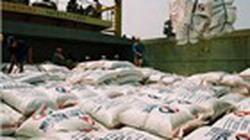 Xuất khẩu gạo đã đạt hơn 1 tỷ USD