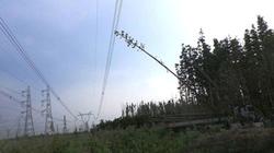 Điểm lại những sự cố mất điện lớn nhất từ trước đến nay