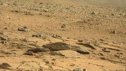 Phát hiện sinh vật lạ di chuyển trên sao Hỏa?