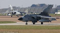 Vẹt chết vì... máy bay phản lực, Bộ Quốc phòng Anh móc hầu bao ra đền