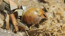 Toàn cảnh cuộc khai quật cổ vật trên con tàu đắm ở Quảng Ngãi