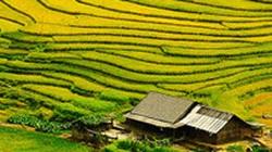 Sapa đẹp đến nghẹn thở qua con mắt người Thái