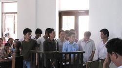 """12 """"lâm tặc"""" đốn hạ sưa trăm tỷ ở Phong Nha lĩnh án tù"""