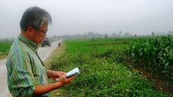 Nhà khảo cổ Nhật thiệt mạng vì tai nạn giao thông ở Hà Nội
