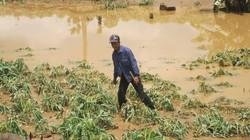 Vỡ đập thủy điện ở Gia Lai: Chưa kiểm chứng được thông tin có người chết trôi
