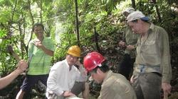 Đếm gốc cây, bảo vệ rừng