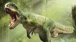 Hãi hùng xem quái vật khủng nhất hành tinh