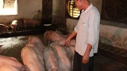 Nông dân góp vốn làm trang trại