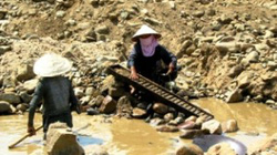 Quảng Nam: Chấn chỉnh khai thác vàng trái phép