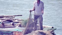 Bất an với nạn phá lồng bè cá