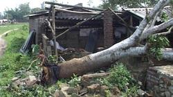 Quảng Ninh: Mưa lốc, hàng loạt nhà bị sập, tốc mái