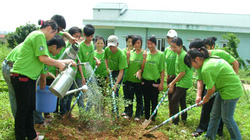 Gần 7.500 lượt người tham gia vệ sinh môi trường