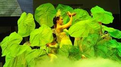 Liên hoan Múa quốc tế 2014
