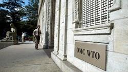 Mỹ lợi dụng WTO để kiểm soát Nga và NATO?