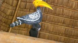 """Chim Tring, loài """"chim thiêng"""" của người Cơtu"""