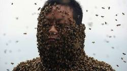 """SỐC: 46 vạn con ong bu kín người ông """"khỏa thân"""""""